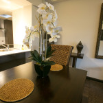 Full-Kitchen-Warrnambool-Gallery-Apartments