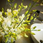 TripAdvisors-Reviews-Gallery-Apartments-Warrnambool