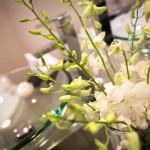 Gallery-Apartments-Warrnambool-Trip-Advisor-Reviews